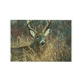 Cool Deer hunting Rectangle Magnet (10 pack)
