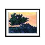 Sunset Torrey Pines Framed Panel Print