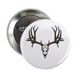 European mount mule deer 2.25