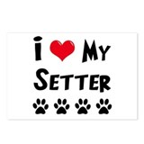 Setter Postcards (Package of 8)