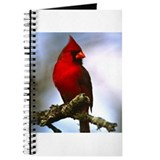 Bird Photo Journal
