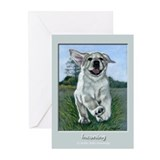 Incoming!!! Yellow Lab Puppy Greeting Cards (Pk of