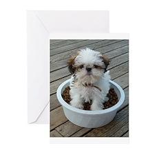 Shih Tzu Puppy Greeting Cards (Pk of 10)
