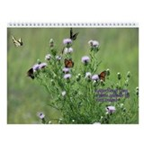 Butterflies of Iowa Wall Calendar