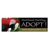 Large Bumper Sticker - Macaw