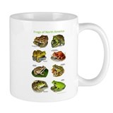 Frogs of North America Mug