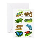 Rainforest Animals Greeting Cards (Pk of 10)