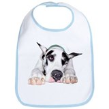 Great Dane Shy Harlequin Bib
