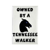 Tennessee Walker Rectangle Magnet (100 pack)