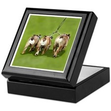 Bull Dogs Butts Keepsake Box