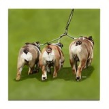 Bull Dogs Butts Tile Coaster