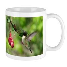 2 Photos Hummingbird Mug