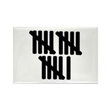 16th birthday Rectangle Magnet (10 pack)