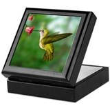 Hummingbird in Flight Bird Photo Keepsake Box