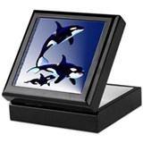 Killer Whale Family Keepsake Box