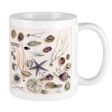 Unique Seashells Mug