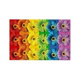 Rainbow Daisies Rectangle Magnet