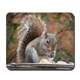 Squirrel Mousepad