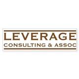 Leverage Consulting Bumper Car Sticker