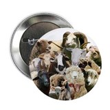 "Round Sheep Collage 2.25"" Button (10 pack)"