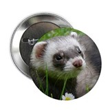 "Ferret-GardenRogue 2.25"" Button"