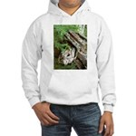 Old Wood Hooded Sweatshirt
