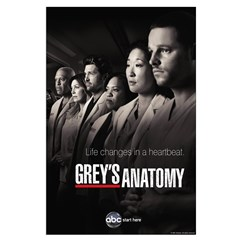 Grey's Anatomy 2010 Large Poster