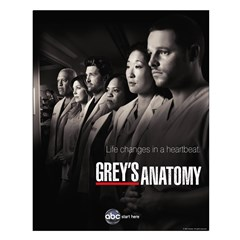 Grey's Anatomy 2010 Small Poster