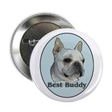 French bulldog buddy Button