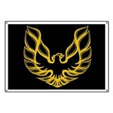 Firebird / Trans Am Banner