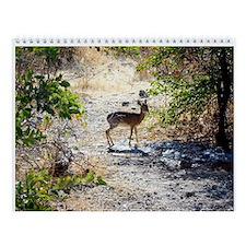 African Wildlife Wall Calendar