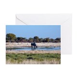 Black Rhino Greeting Cards (Pk of 20)