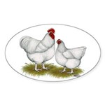 Orpington White Chickens Sticker (Oval 10 pk)