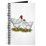Orpington White Chickens Journal
