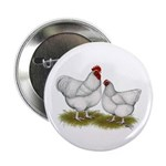 "Orpington White Chickens 2.25"" Button (100 pa"