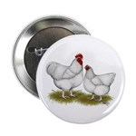 "Orpington White Chickens 2.25"" Button"