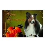 Thanksgiving Sheltie Postcards (Package of 8)