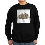 Silly Little Sleeping Bear Sweatshirt (dark)