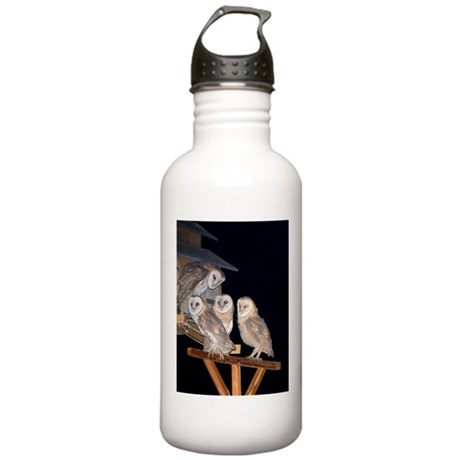 Image 01: Molly The Owl Stainless Water Bottle 1.0