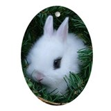 Baby Bunny Ornament (oval)