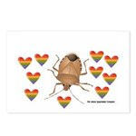 Stink Bug Postcards (Package of 8)