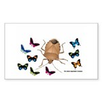 Stink Bug Sticker (Rectangle 50 pk)