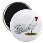 Phoenix White Rooster Magnet