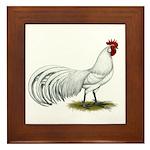 Phoenix White Rooster Framed Tile