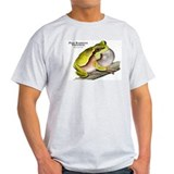 Pine Barrens Treefrog T-Shirt