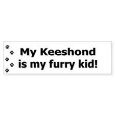 Keeshond Furry Kid Bumper Bumper Sticker
