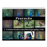 Peacocks (wall calendar)