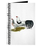 Yokohama Duckwing Chickens Journal
