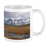 Fish Creek  Tasse
