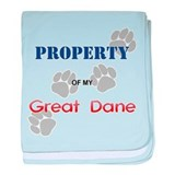Great Dane Property Infant Blanket